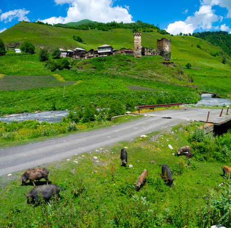 svan: Paese paesaggio in Davberi, Samegrelo-Zemo Svaneti, Georgia