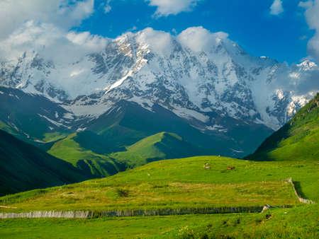 ushguli: Beautiful meadow landscape near Ushguli, Svaneti, Georgia  Shkhara mountain in the background Stock Photo