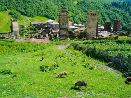 swanetia: Country landscape in Ushguli, Svaneti, Georgia.