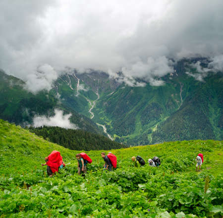 Young hikers trekking in Svaneti, Georgia photo