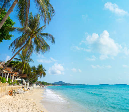 Tropical resort panorama in Koh Samui, Thailand photo