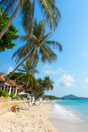 Tropical resort panorama in Koh Samui, Thailand photo