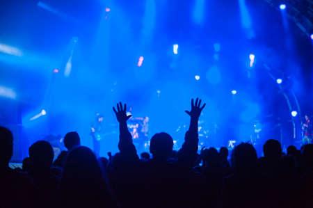 Fans cheering at an open-air live concert. Foto de archivo