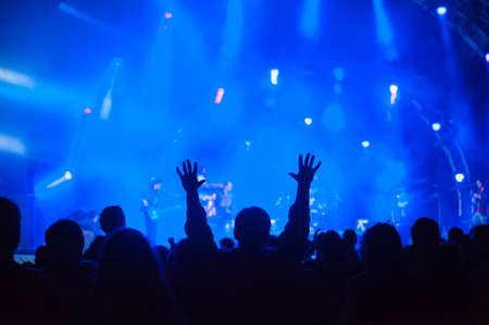 Fans cheering at an open-air live concert. Banque d'images