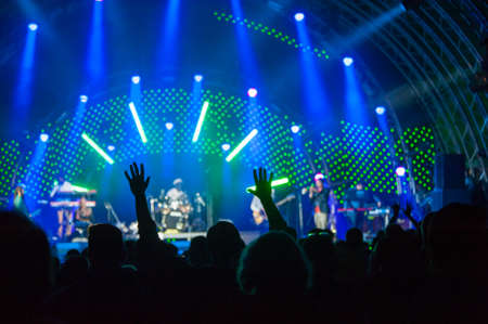 Fans cheering at an open-air live concert. Image not in focus.