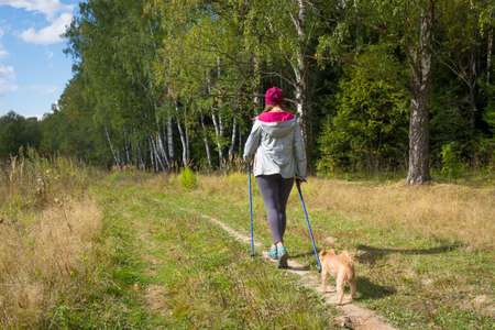 griffon bruxellois: Young woman goes Nordic walking outdoors with small dog Griffon Bruxellois breed. Back view