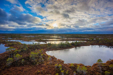 Kemeri swamp landscape in Latvia Stock Photo