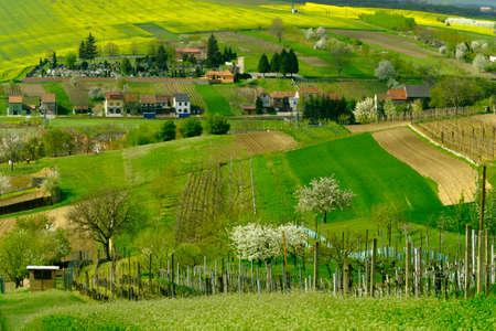 moravia: Rural landscape in countryside in South Moravia, Csezh Republic Stock Photo