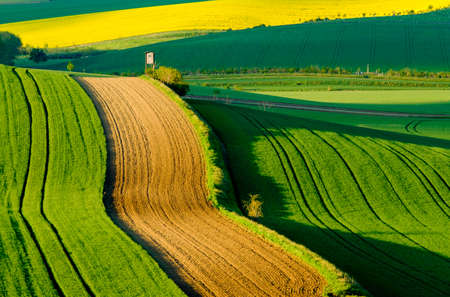 moravia: Wavy meadows spring landscape in South Moravia, Czech Republic Stock Photo