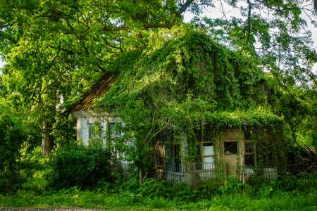 Overgrown house facade at countryside