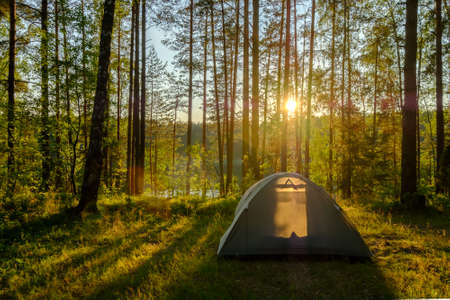 campsite: Tent in a pine forest on sunset Stock Photo