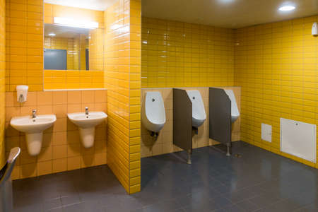 Public modern wc mens room interior