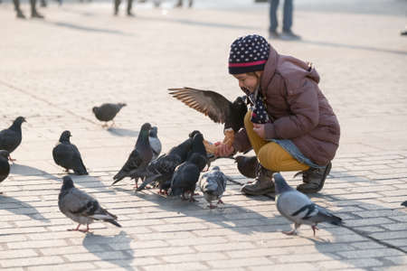 20 years old: Krakow, Poland - December 20, 2016: Girl age 6-8 years feeding pigeons at main square in old city at day time