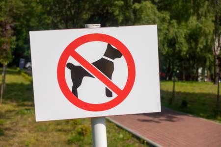 Interdit, chien, marche, signe, dans, parc Banque d'images - 82805053