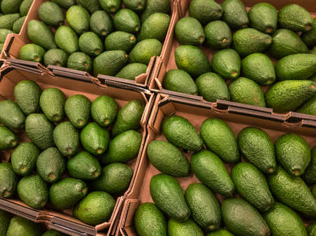 Avocado for sale in the supermarket
