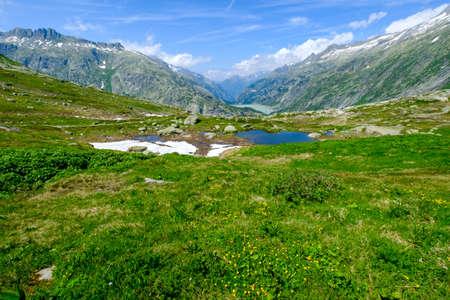 Summer landscape of Switzerland nature near Grimsel pass Stock Photo