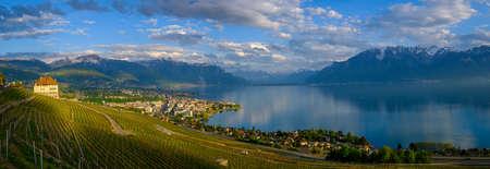 Panoramic view to vineyards near Vevey at Geneva lake, Switzerland Foto de archivo - 116530553