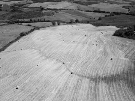 Aerial summer rural landscape of Tuscany nature in summer, black and white