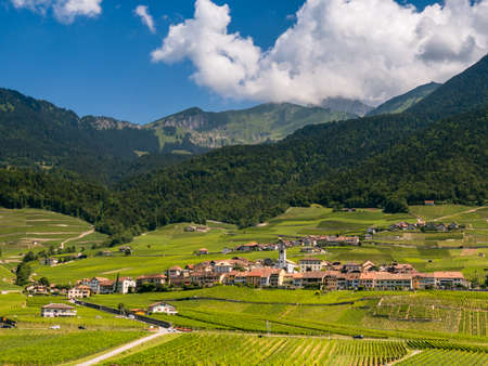 Summer Switzerland valley landscape with vineyards at foreground near Aigle 写真素材