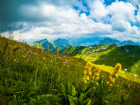 Summer landscape of Switzerland mountain nature at Rochers-de-Naye