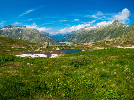 Summer landscape of Switzerland nature at Grimsel pass 写真素材