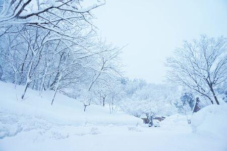 heavy: Heavy snowing in Japan Stock Photo