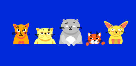 Bright illustration with cats lined up in a horizontal line. Each cat is unique and has its own breed. Cute kittens with different emotions in a flat style. Lovely cats of different sizes in vector. Illustration