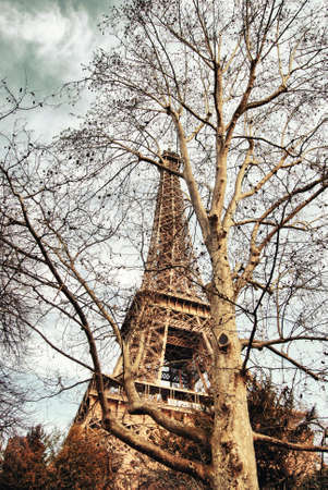 concealed: Eiffel tower concealed among the trees  Stock Photo