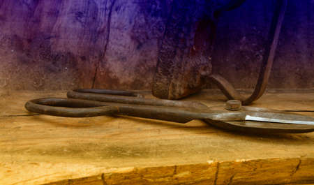 pruning shears: The old pruning shears. Stock Photo