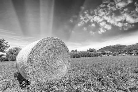 Bale hay with beautiful sky. photo