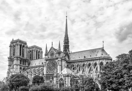 노트르담 성당, 파리입니다. 스톡 콘텐츠 - 33936042