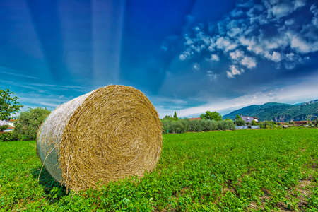 Bale hay with beautiful sky. photo