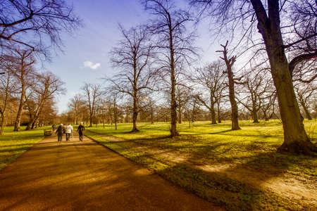 hyde: Autumn in Hyde Park.