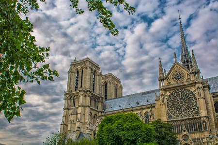 dame: Notre Dame Cathedral between the trees. Stock Photo