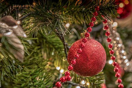 red ball: Red ball on Christmas tree.