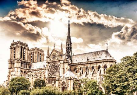 notre dame cathedral: Notre Dame Cathedral, Paris.