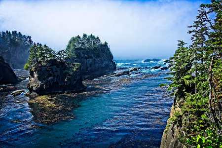 northwest: A spot on the Cape Flattery, WA coast, taken from the viewpoint. Some kayaks near the bottom left.