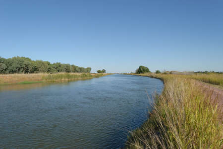 irrigation channel with a road on the side and reeds and trees on a sunny day with a blue sky Stock Photo