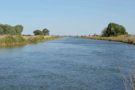 an irrigation channel in the country full of water with trees and reeds along sides and a blue sky on a sunny day Stock Photo