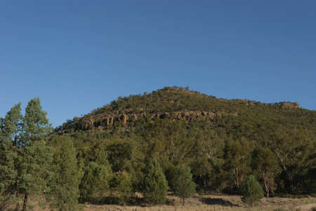 a rural paddock with a large hill and trees around the bottom on a cloudless and sunny  day
