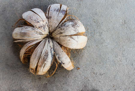 Coconut shell with a cement floor in the background Stock Photo