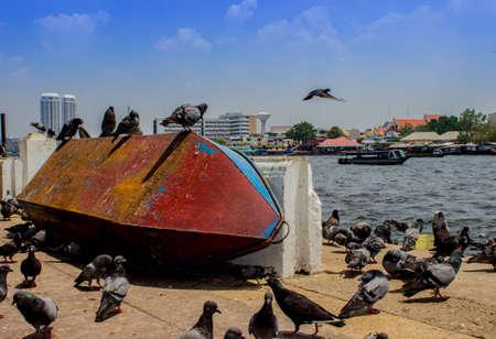 Bird Island Boat on the Chao Phraya River in Bangkok, Thailand  Stock Photo
