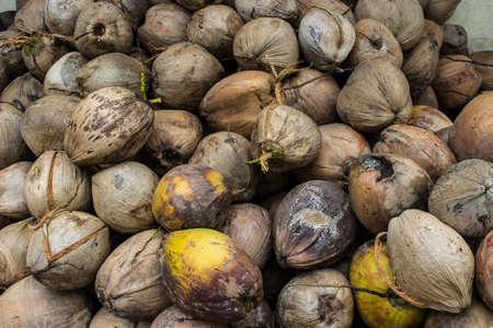 cesto con coconuts.Coconut giallo e marrone