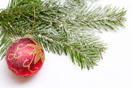 new year eve beads: Red Christmas ball weighs Westcom spruce Bol background Stock Photo