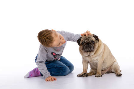 The girl cares for the dog scratching, listening to the stethoscope. isolated background Stock Photo