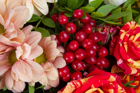 A bouquet of different flowers , background, closeup