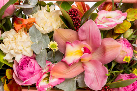 Composition of fresh flowers, isolated background
