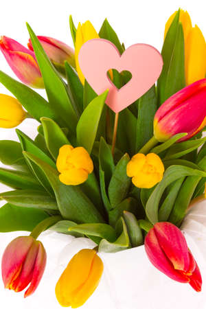 Bouquet of yellow and red fresh spring tulips isolated on white background
