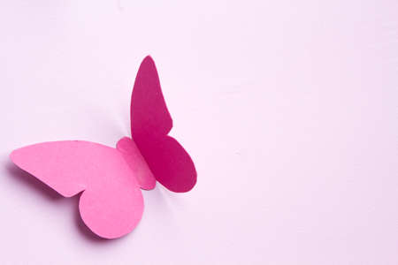Pink butterfly paper on the white wooden wall