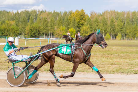 Russia, Novosibirsk, September 5, 2015: Horse racing at the racetrack. City competitions